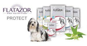 flatazor protect